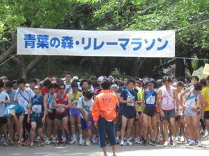 青葉の森リレーマラソン2011