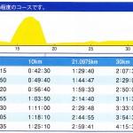 佐倉朝日健康マラソンの高低差