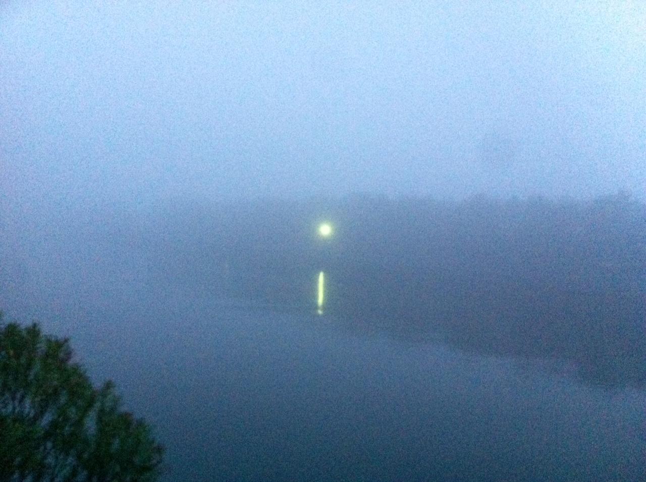 霧の花見川