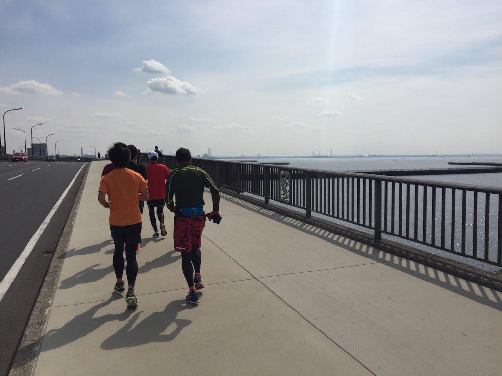 花見川サイクリングロード〜稲毛海浜公園〜マリンスタジアムLSD30kmランニング練習会