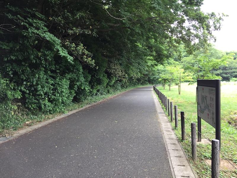 花島公園憩いの広場ランニング