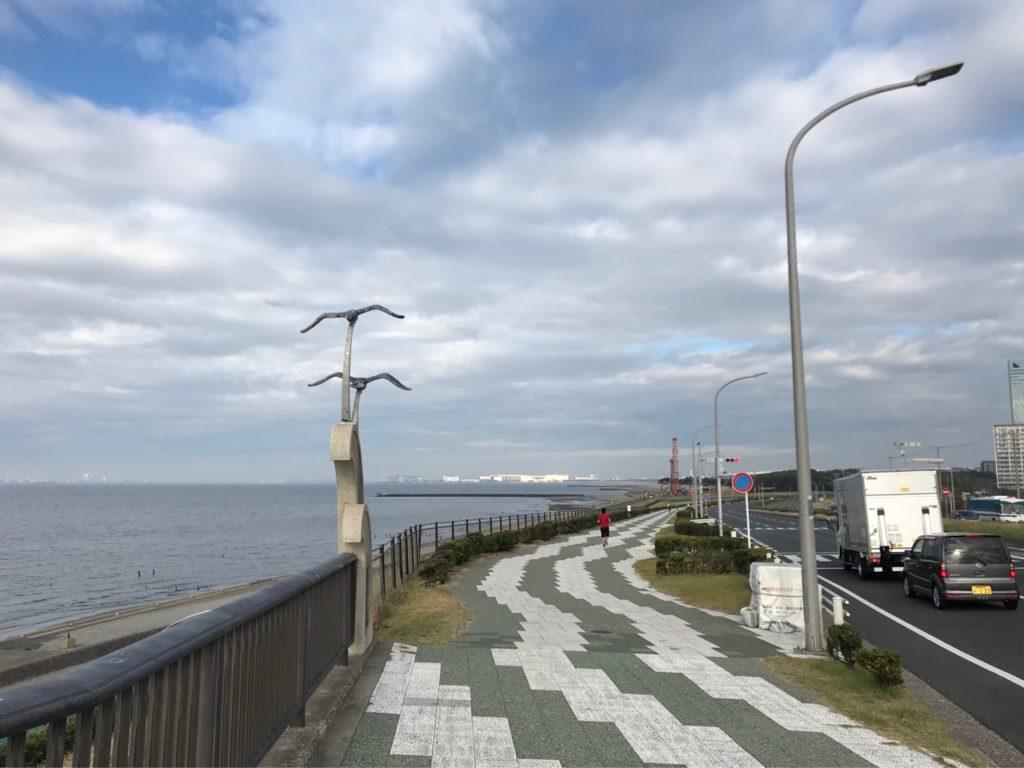 稲毛海浜公園〜花見川沿いLSD20kmランニング練習会