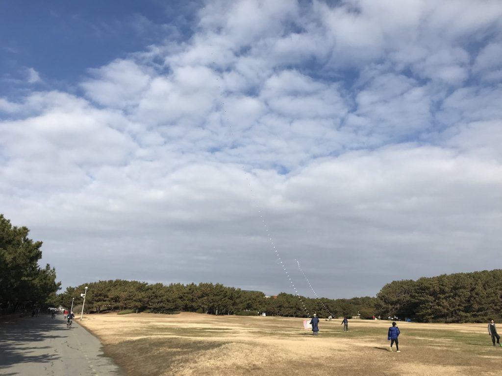 稲毛海 浜公園〜花見川沿いLSD20kmランニング練習会